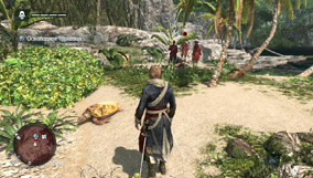 Прохождение Assassin's Creed IV Black Flag - 1